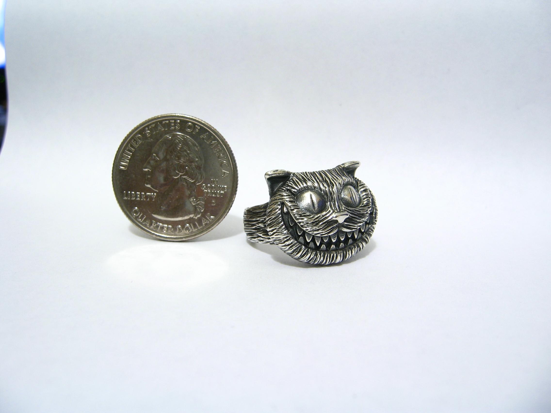 cat silver.JPG