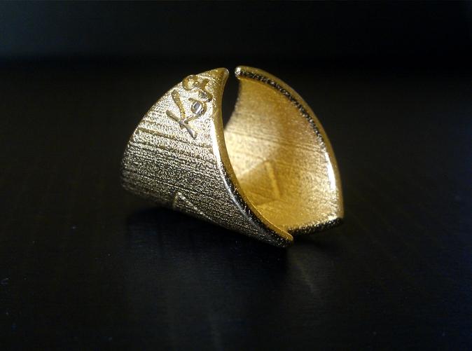 embrace ring 3.jpg