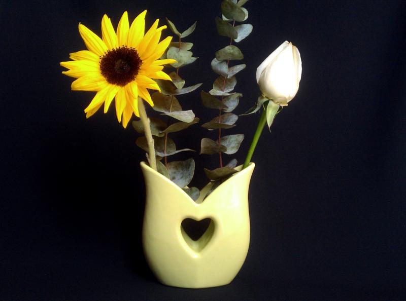 heart vase_cover.jpg