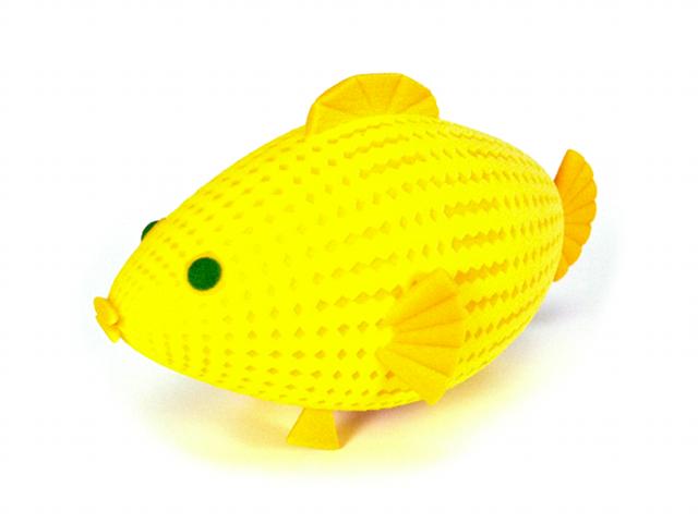 scaledfishblog1.png
