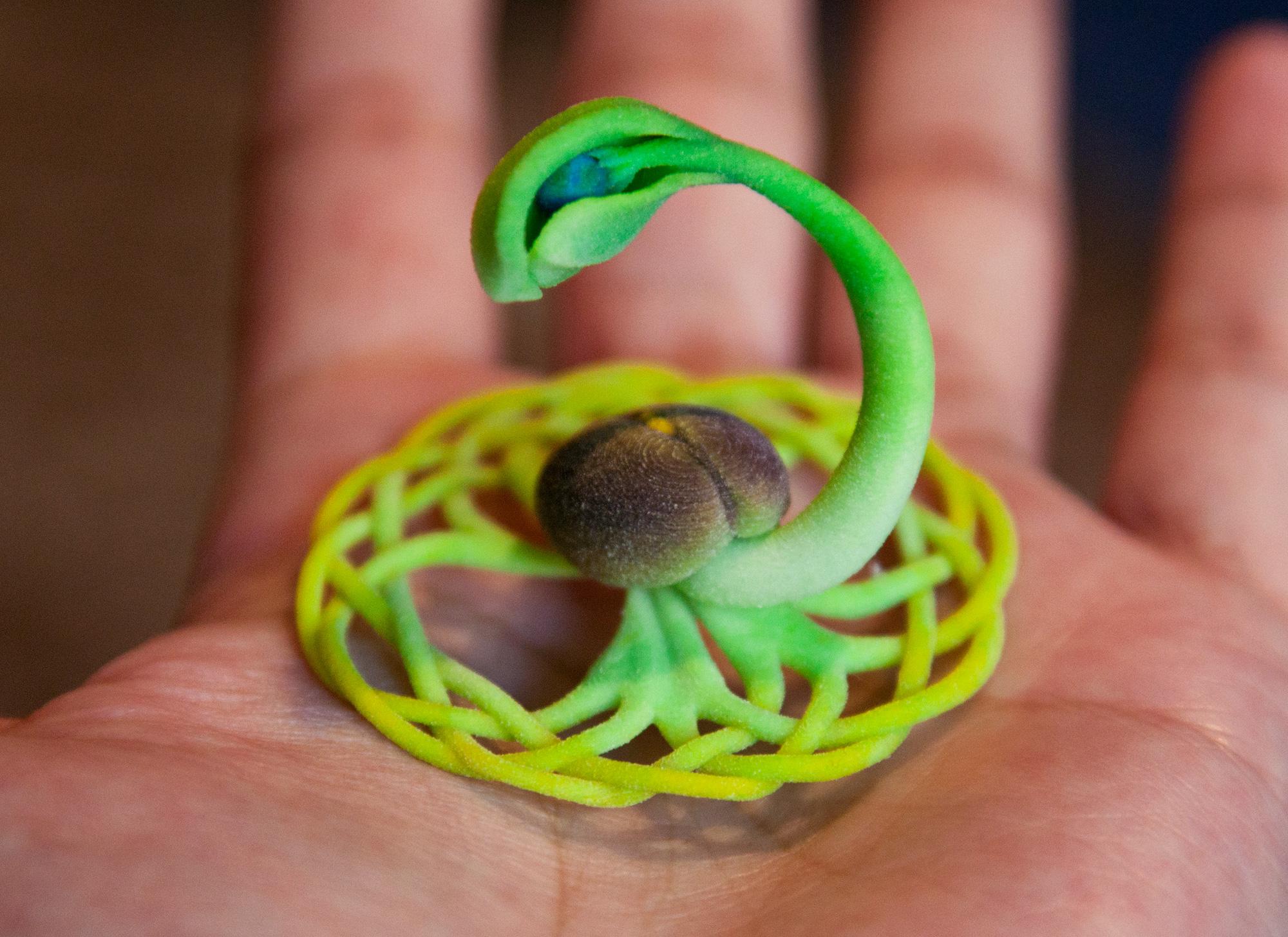 seed_hand.jpg